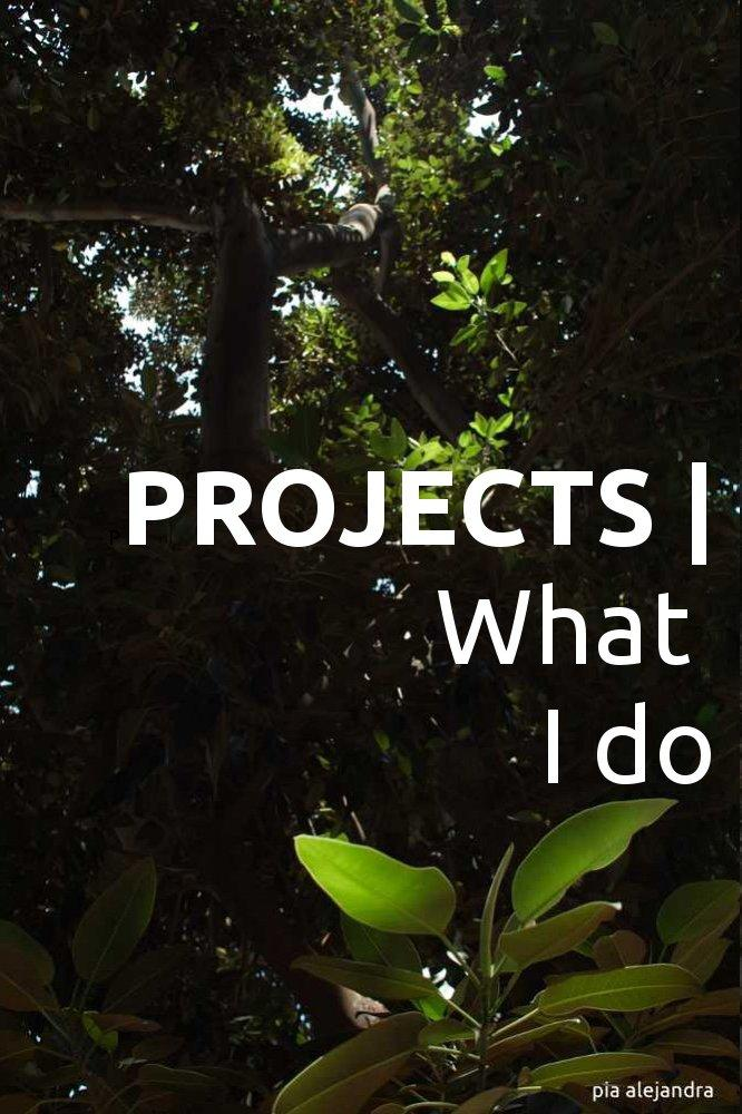 PROJECTS | what i do