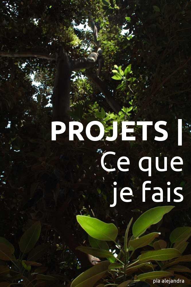 PROJETS | Ce que je fais
